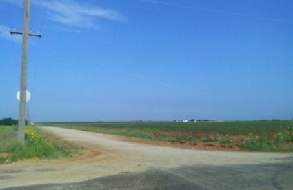 Cotton fields southwest of Lamesa, Texas